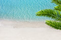 White sand beach and tropical sea with palm tree. Royalty Free Stock Photo