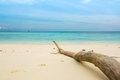 White Sand Sea Beach