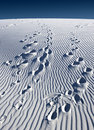 White Sands Stock Image