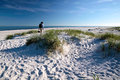 White sandy beach on bornholm the south coast of dueodde denmark Stock Photography