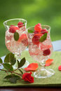 White Sangria Royalty Free Stock Photography