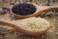 White sesame and black sesame seed on wooden spoon Royalty Free Stock Photo