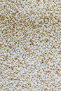 White sesame seeds close up of food background Royalty Free Stock Photos