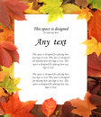 A white sheet of paper on an autumn frame with sample text colorful leaves Royalty Free Stock Images