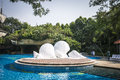 White shell conch sea blue water sunshine swimming pool trees Royalty Free Stock Image