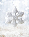 White Snow flake Royalty Free Stock Images