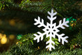 White snowflake in a fresh green Christmas tree Royalty Free Stock Photo