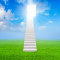 White stair up to open the door success and green grass Royalty Free Stock Photo