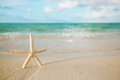 White starfish on white sand beach, with ocean sky and seascape Royalty Free Stock Photo