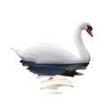White Swan vector illustration Royalty Free Stock Photo