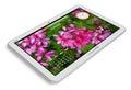 White tablet PC