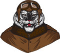 White tiger pilot drawing of a cool Royalty Free Stock Photography