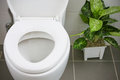 White toilet in modern home, white toilet bowl in cleaning room, flushing liquid in toilet, private toilet in modern room Royalty Free Stock Photo