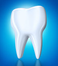 White tooth Stock Image