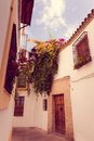 White towns andalusia pueblos blancos series towns large villages northern part provinces cã diz mã laga southern spain mostly Stock Photography