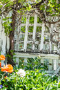 White trellis weatered painted in the garden Stock Image