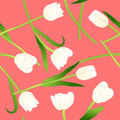 White Tulip on Pink Background. Vector Illustration Royalty Free Stock Photo