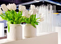 White tulips in interior Royalty Free Stock Images