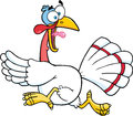 White turkey escape cartoon character mascot Stock Photos