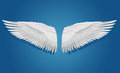 White vector wings on blue background eps objects are layered separately Royalty Free Stock Images
