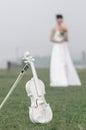 White violin in the grass