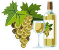 White wine with bottle, glass and grapes Royalty Free Stock Photos