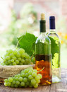 White wine bottles, vine and bunch of grapes outdoor Royalty Free Stock Photo