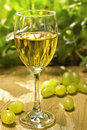 White wine galss Stock Images