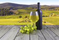 White wine glass bottle grape image of a landscape with vineyard wood Royalty Free Stock Images