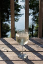 White wine spritzer Royalty Free Stock Photo