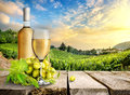 White wine and vineyard with grape on a background of Stock Photo