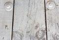 White wood slat with screw Stock Photos