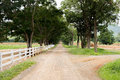 White wooden fence around the ranch and country road with tree Royalty Free Stock Photo