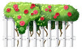 A white wooden fence with flowering plants illustration of on background Stock Photography