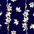 White yellow daffodils on a bark blue background. Seamless pattern