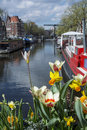 White and yellow flowers on the canal in Amsterdam with boats, buildings and blue water as background Royalty Free Stock Photo