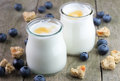 White yougurt in glass bowls. Royalty Free Stock Photo