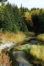 Whitemud creek in autumn Royalty Free Stock Images