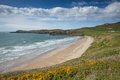 Whitesands bay pembrokeshire west wales uk beach st brides in the coast national park the coast path passes Royalty Free Stock Photography