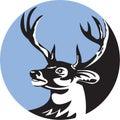 Whitetail Deer Buck Head Circle Retro Royalty Free Stock Photo