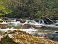 Whitetop Laurel Creek on Virginia Creeper Trail Royalty Free Stock Photo