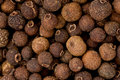 Whole Allspice (Pimenta dioica) Stock Images