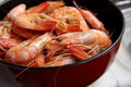 Whole cooked prawns Stock Images