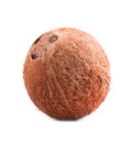 A whole, delicious coconut. Close fresh coconut, on a white background. Brown natural tropical and fresh fruit coconut.