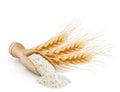 Whole grain wheat flour isolated on white Royalty Free Stock Photo