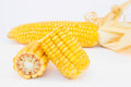 Whole and halve corncobs two halves one corncob in the background Royalty Free Stock Image