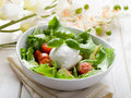 Whole mozzarella with salad Stock Image