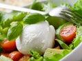 Whole mozzarella with salad Royalty Free Stock Photos