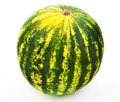 Whole ripe watermelon in a white background Royalty Free Stock Photography