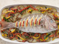 Whole Roasted Bream with Chilies Potatoes Royalty Free Stock Image